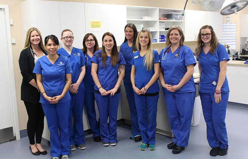 SEVO-Med Southeast Veterinary Oncology and Internal Medicine